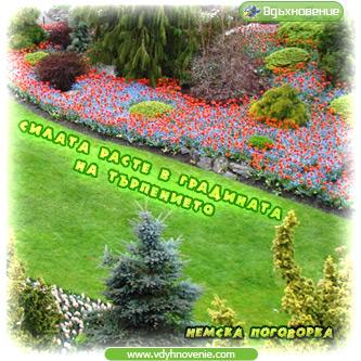 Силата расте в градината на търпението - Немска поговорка