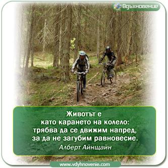 Животът е  като карането на колело: трябва да се движим напред, за да не загубим равновесие. Алберт Айнщайн