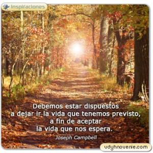 Debemos estar dispuestos a dejar ir la vida que tenemos previsto, a fin de aceptar la vida que nos espera. - Joseph Campbell